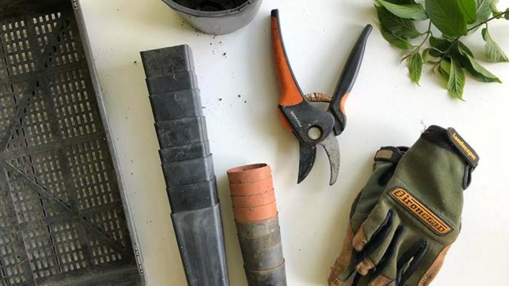 tuin_gereedschap
